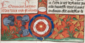 Detail of a Tudor rose, from British Library Royal 20 E III   f. 30v.